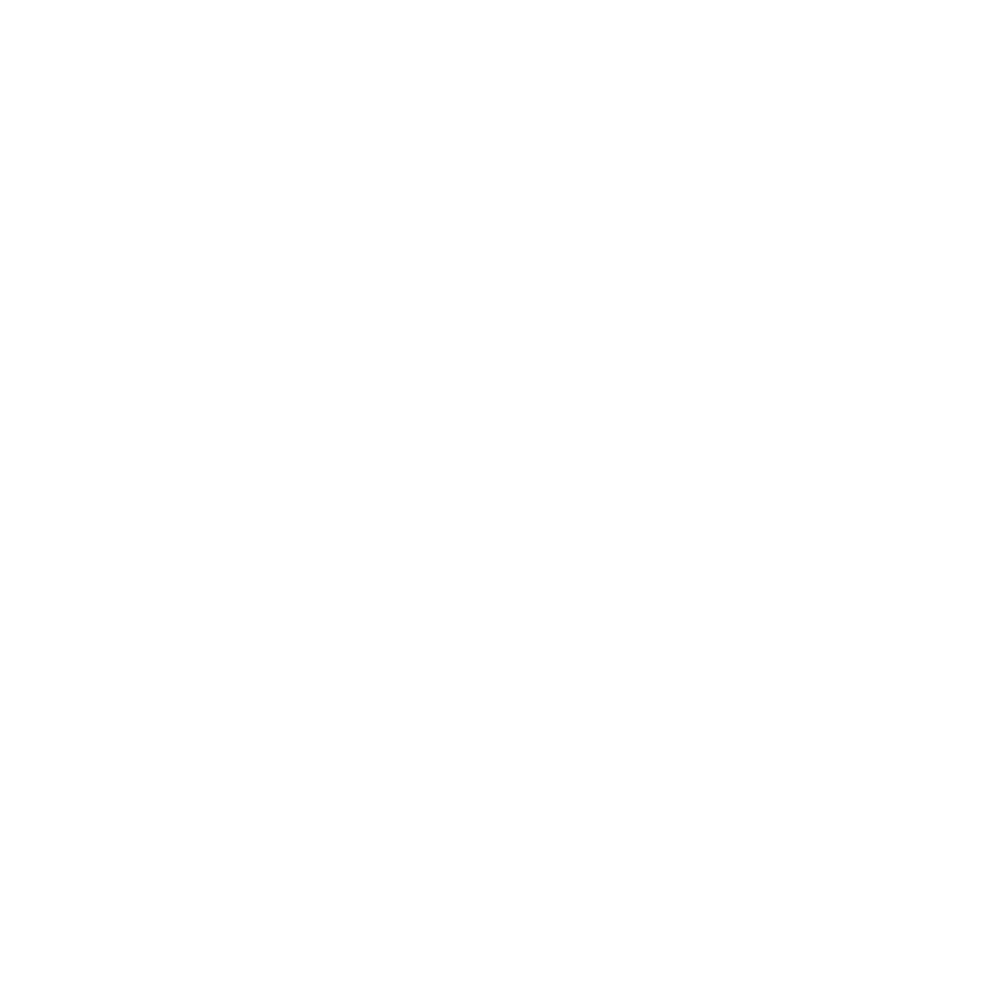 Portal candidato